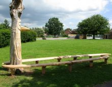 bench: local sweet chestnut – CP schools project – carving: tom staddon